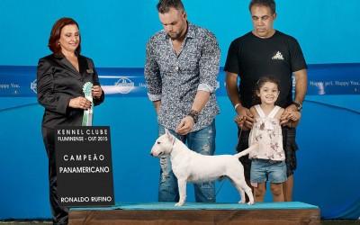 Campeão Brasileiro e Campeão Panamericano Blog de Notícias - canil aguiar em foco 1 400x250 - Blog de Notícias