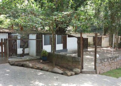 WhatsApp Image 2017-12-11 at 14.01.33 canil em cachoeiras de macacu - WhatsApp Image 2017 12 11 at 14 - Canil no Rio de Janeiro – RJ – Sede Campestre