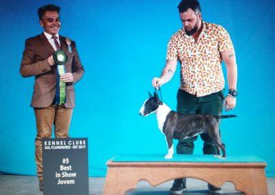 Kyra Br Aguiar bull terrier miniatura - M  e Kyra 400x284 - Bull Terrier Miniatura em Niterói